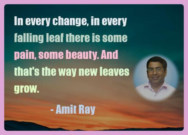 Amit Ray Motivation Quote In every change in every falling