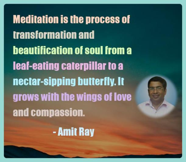 Amit Ray Motivation Quote Meditation is the process of