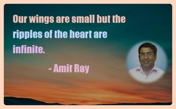 Amit Ray Motivation Quote Our wings are small but the ripples