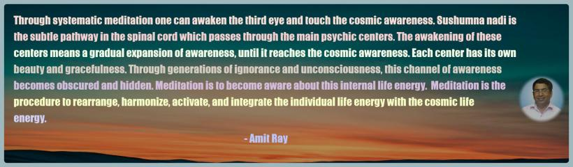 Amit Ray Motivation Quote Through systematic meditation one
